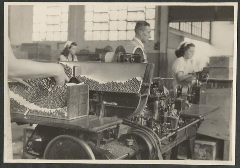 Santa Cruz do Sul Fábrica de Cigarros na década de 1950. Fonte: foto Theodor Preising.