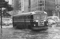 SP São Paulo Histórico pluviométrico 7
