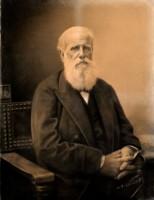 Dom Pedro II 2