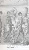 Escravidão no Brasil 3