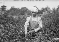 EUA Fazenda
