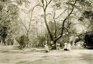 Pelotas Parque Souza Soares 1900