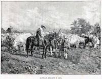 Giussepe Garibaldi Mercante di buoi República Riograndense 1892