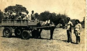 Santa Vitória do Palmar Primeira carroça de quatro rodas com pneus e cameras(acervo familia Farias de Albernnaz) 1974