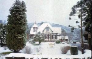Canela Neve 1991