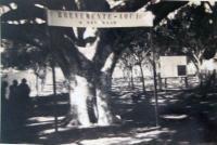 Guaíba Baar da Figueira Alegria 1938 3