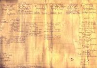 Arvore Genealogica 1956 1