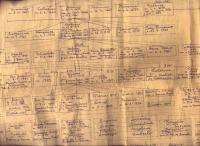 Arvore Genealogica 1956 5